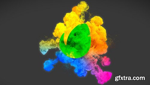 Videohive Beauty Particles Logo Pack 19961907