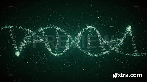 MA - Looped DNA Strands