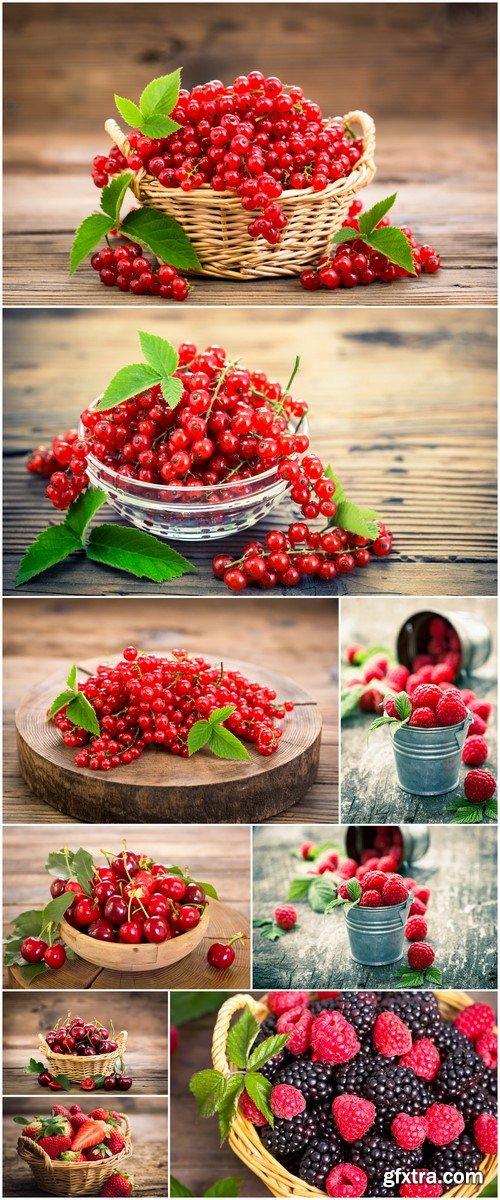 Berry 9X JPEG
