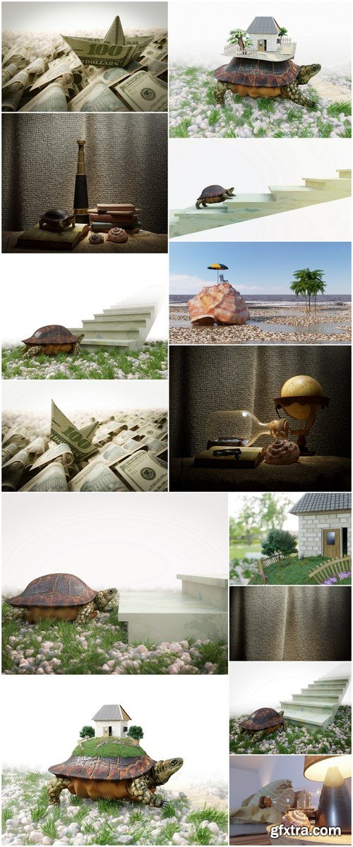 Turtle goal concept 14X JPEG