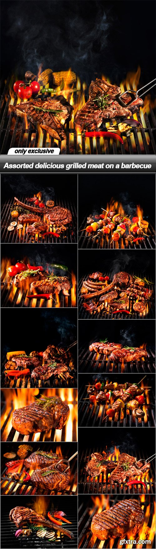 Assorted delicious grilled meat on a barbecue - 13 UHQ JPEG