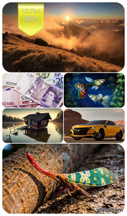 show user publications raimova 187 page 45 187 gfxtra