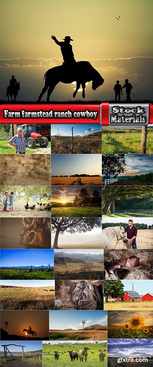 Farm farmstead ranch cowboy shepherd cattle cow horse 25 HQ Jpeg