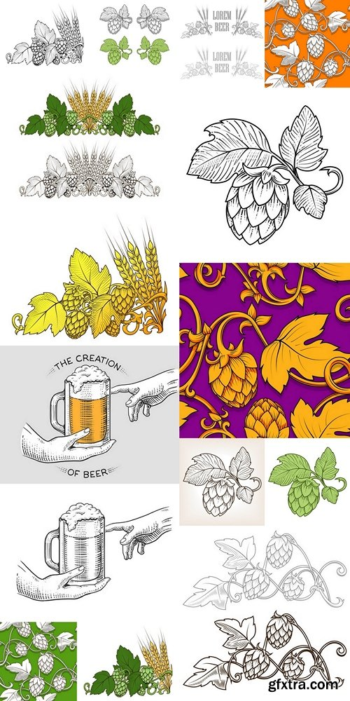 Hops and beer ornament vector illustration