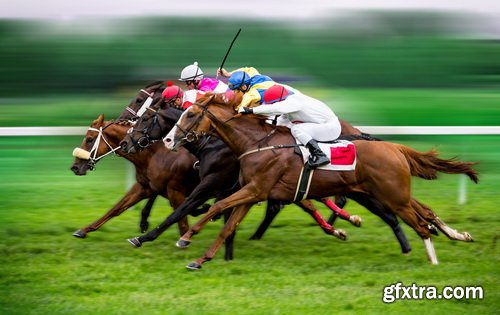 Photos - Horse Racing Set