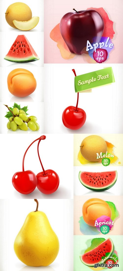 Fruit vector illustration