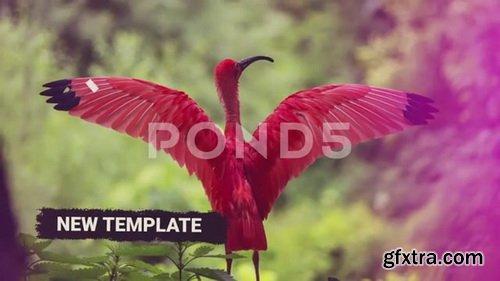 Pond5 - Indie Paintbrush Slideshow - 82896294