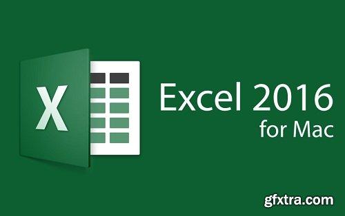 Microsoft Excel 2016 VL 16.9.0 Multilingual (macOS)