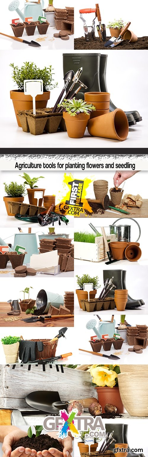 Agriculture tools for planting flowers and seedling