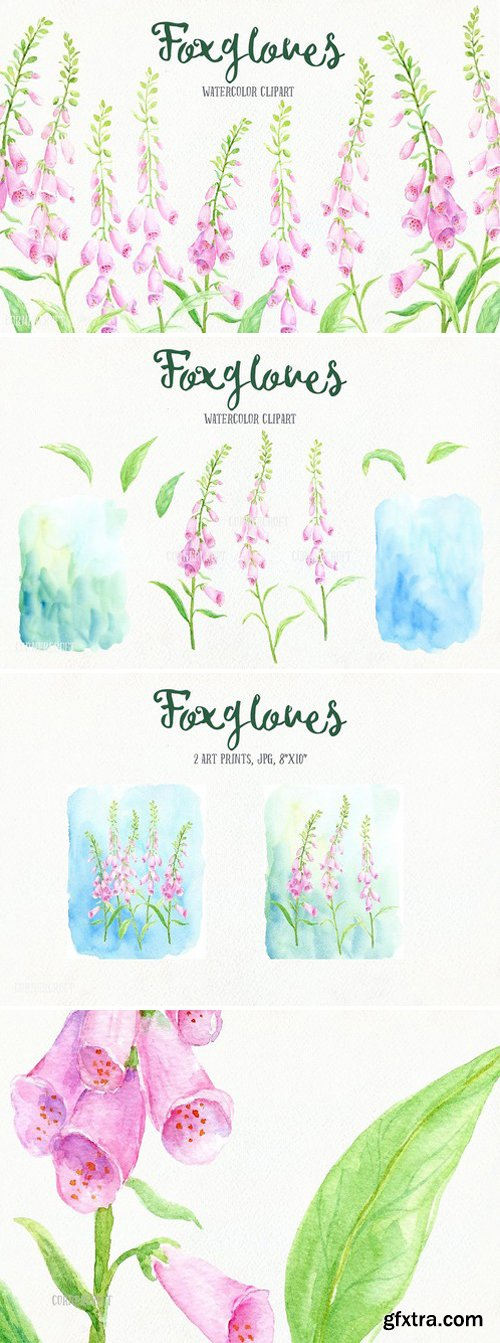 CM - Watercolor Pink Foxgloves Clip Art 1589992