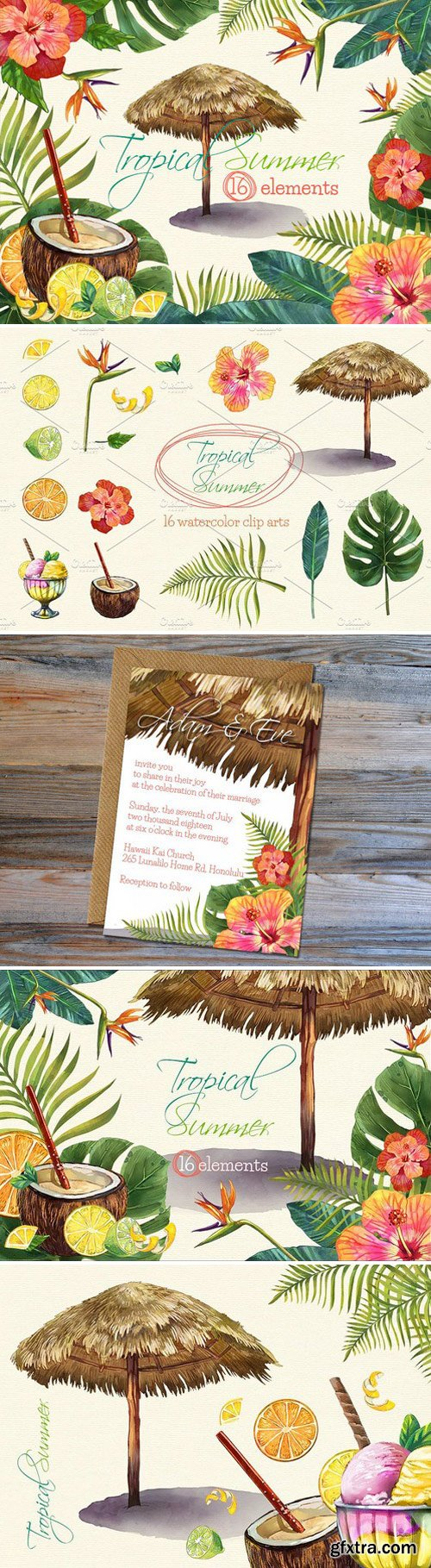 CM - Tropical Summer Watercolor Clip Arts 1588322