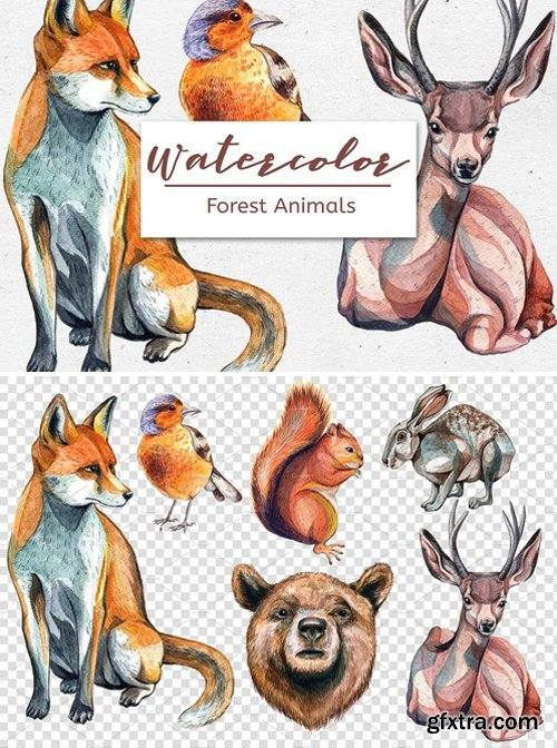 CM - Watercolor Forest Animals – Set of 6 2357035