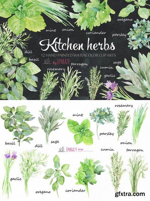 CM - Kitchen herbs. Watercolor clipart 1576638