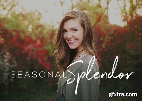 Seasalt-co - Seasonal Splendor Collection Photoshop Actions