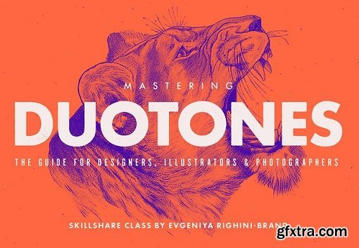 Mastering Duotones in Photoshop
