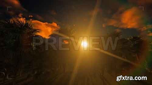 Sun And Jungle - Motion Graphics 83537