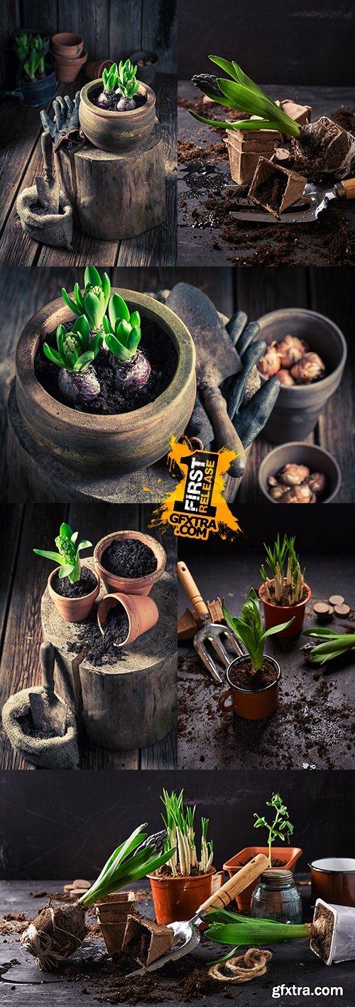 Flowerpot and garden stock favourite hobby