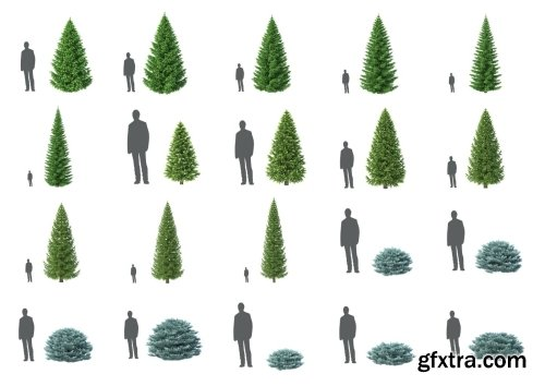 HD Trees Vol 6 for Cinema4D