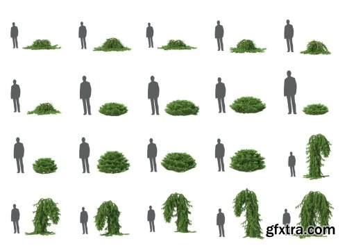 HD Trees Vol 5 for Cinema4D