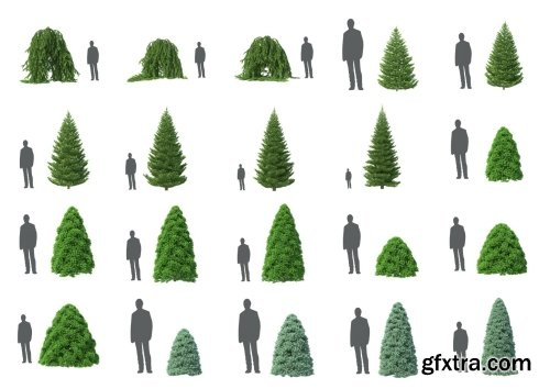 HD Trees Vol 5 for Cinema4D
