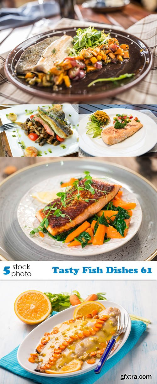 Photos - Tasty Fish Dishes 61