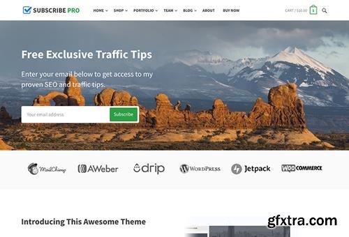 HappyThemes - Subscribe Pro v1.1 - WordPress Multi-Purpose Theme