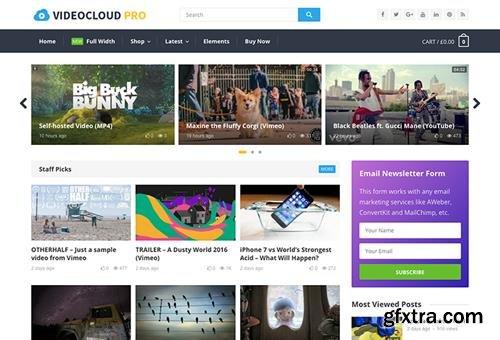 HappyThemes - VideoCloud Pro v1.1 - WordPress Video Theme