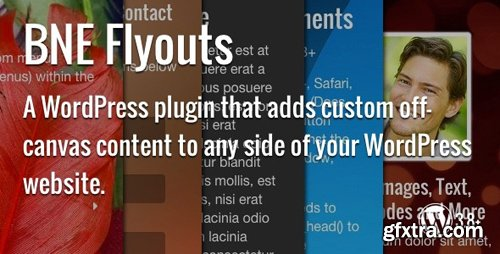 CodeCanyon - Flyouts v1.4 - Off Canvas Custom Content for WordPress - 7837448