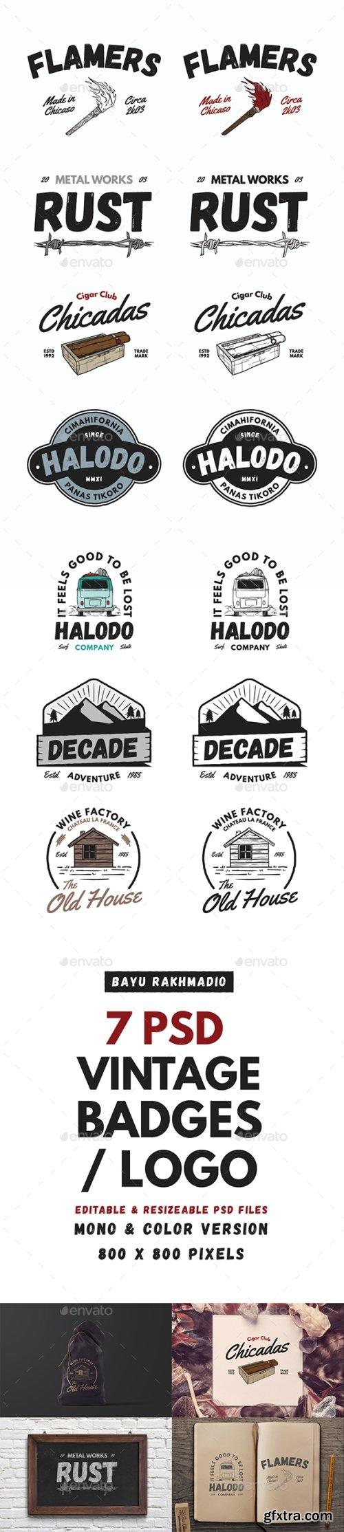 Graphicriver - 7 Vintage Badges / Labels 20519994