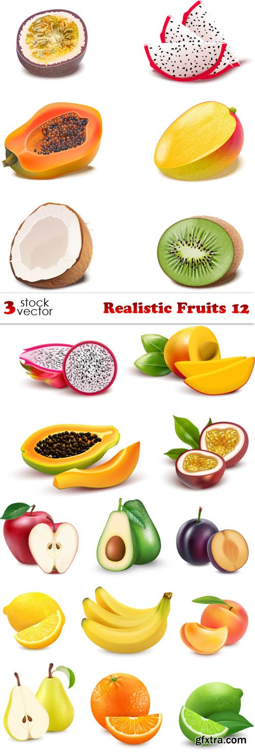 Vectors - Realistic Fruits 12