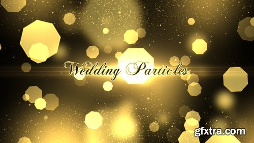 Videohive Wedding Particles Opener 14728826