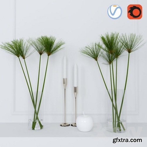 Shoots of papyrus in a glass vase 3d model