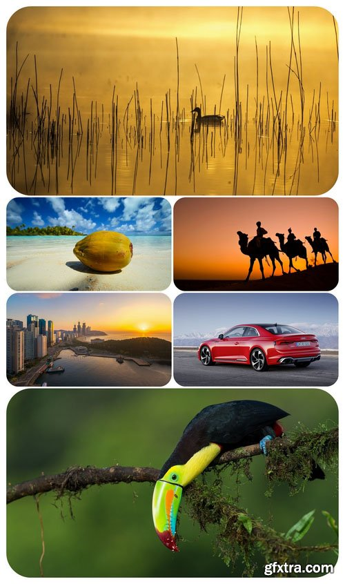 Beautiful Mixed Wallpapers Pack 709