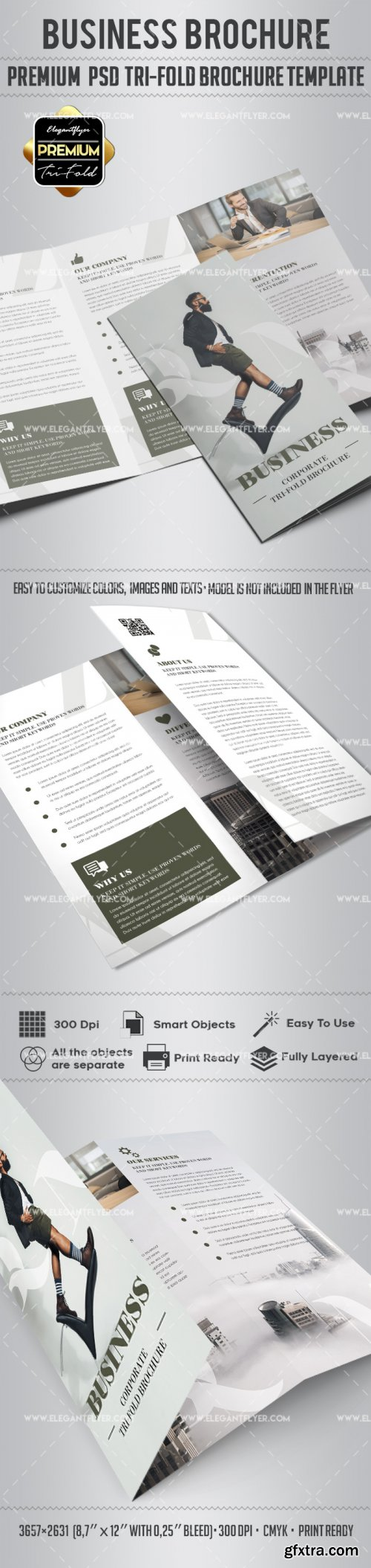 Business V17 22018 Tri-Fold Brochure PSD Template