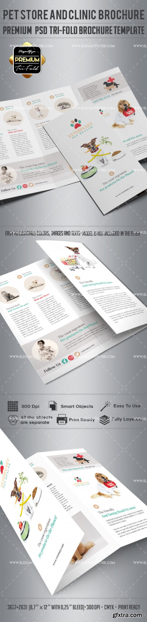 Vet Clinic V4 2018 Tri-Fold Brochure PSD Template