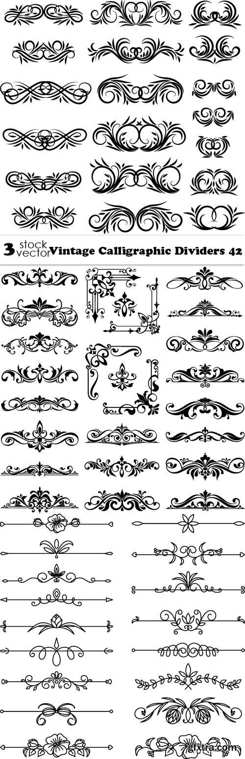 Vectors - Vintage Calligraphic Dividers 42