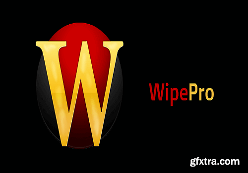 Wipe Pro 17.24 Multilingual