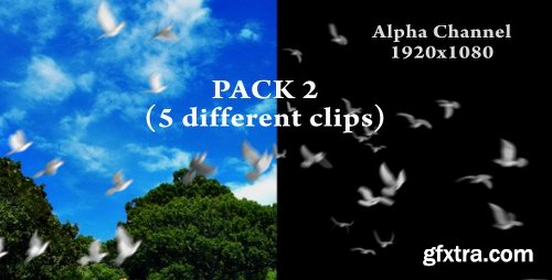 Videohive Flying doves (pack Vol.2) 148157