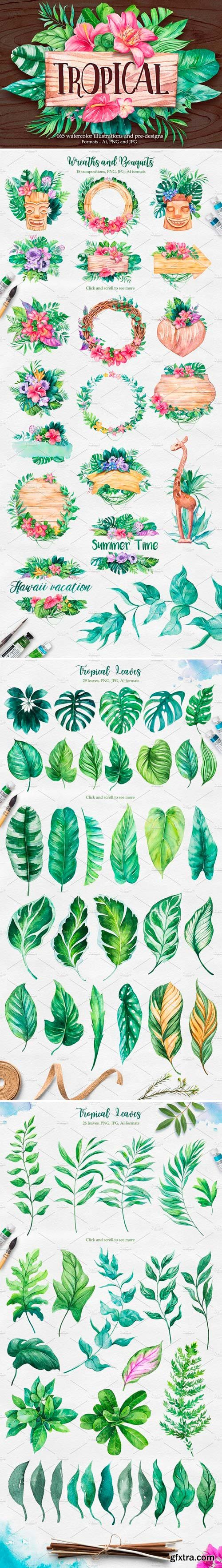 CM - Tropical Watercolor illustrations 2379405