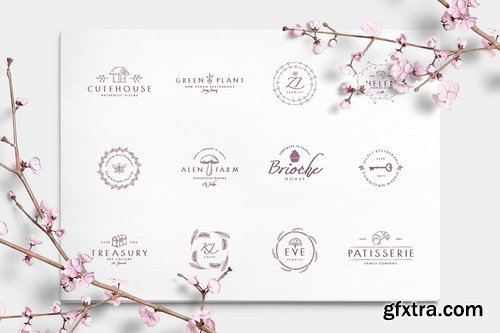 CM - Wonderland Fonts Pack & Branding Kit 2614377