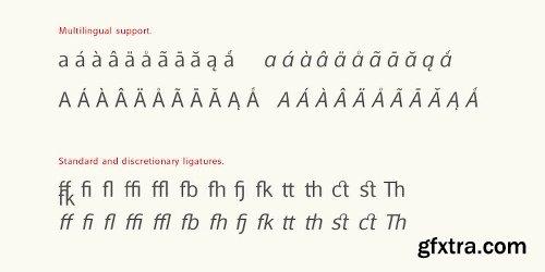 Alfabetica Font Family - 16 Fonts