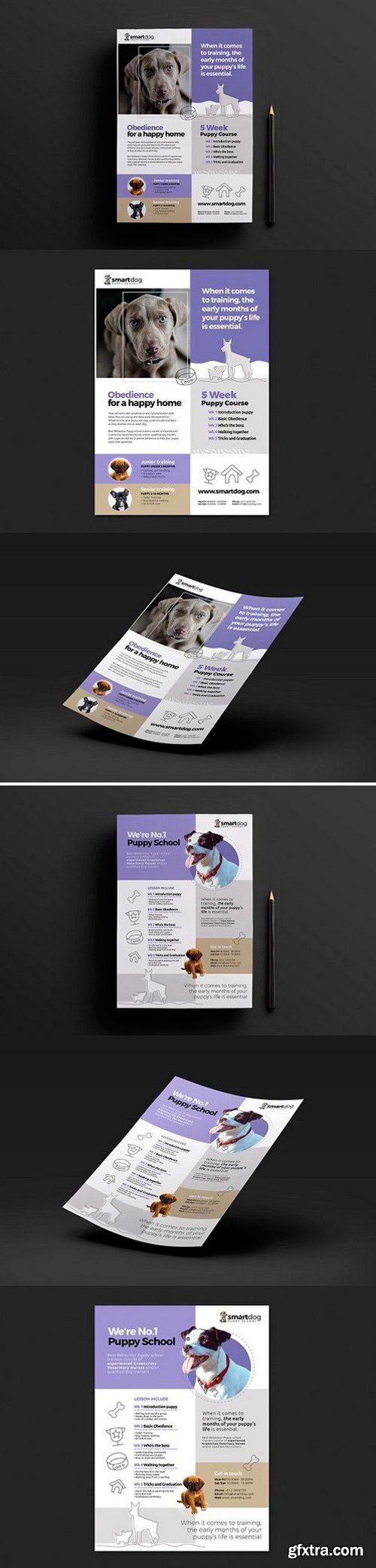 A4 Puppy School Poster Template Bundle