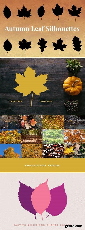 Autumn Leaf Silhouettes + Bonus Stock Photos