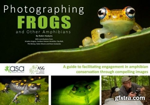 Photographing Frogs and Other Amphibians 2018