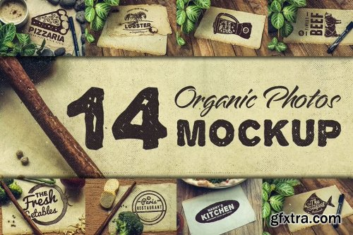 Vintage Rustic Bundle of 325+ Logos, Fonts and Photo Mockups