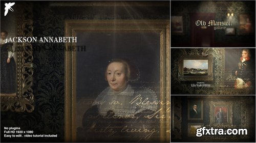 Videohive Old Mansion Gallery 21939915