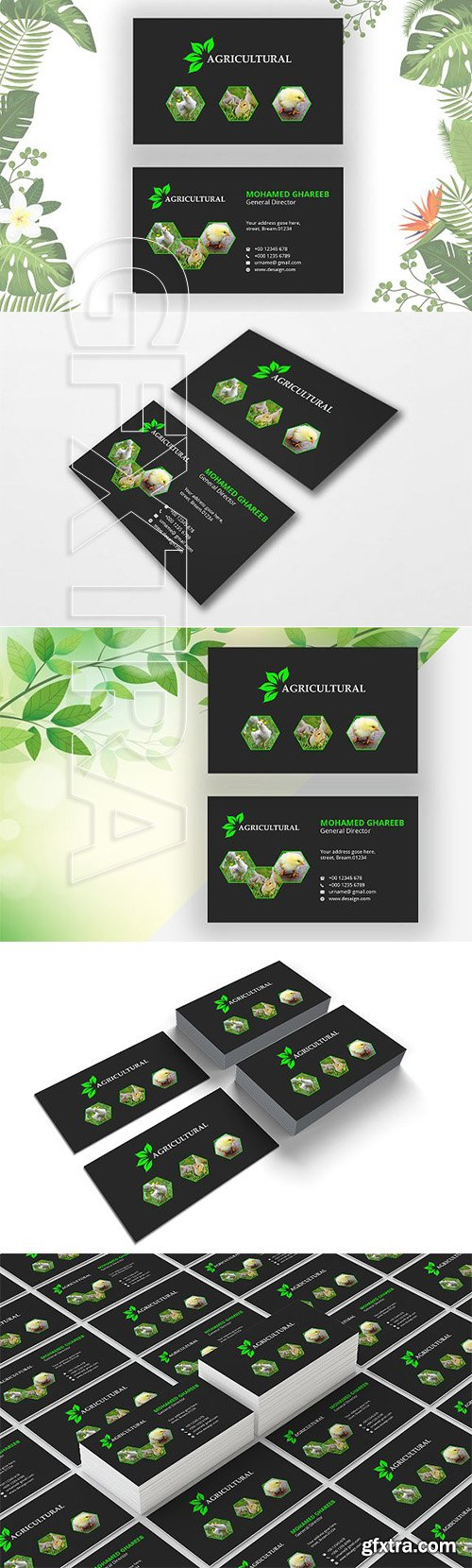 CreativeMarket - Agriculture Business Card 2633079