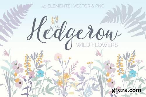 Hedgerow Wildflowers