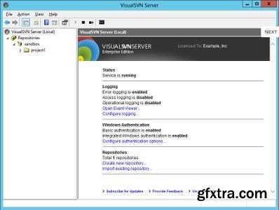 VisualSVN Server Enterprise 3.9.1