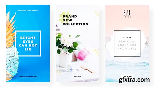 Videohive Instagram Stories and Posts Pack V2 22063442